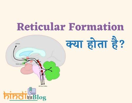Reticular-formation